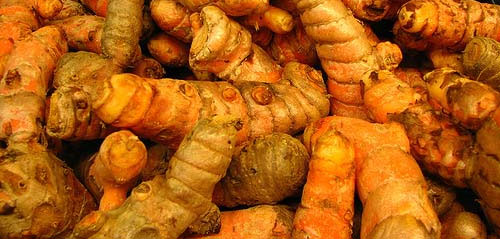 Why You Should Add the Spice Turmeric to your Daily Nutrition Program