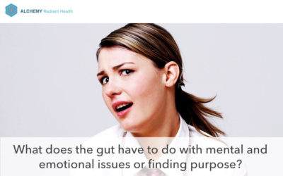Difficulty with Anxiety or Brain Fog? Your Gut May Be the Culprit!